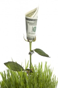 Alternative Investments Money Tree