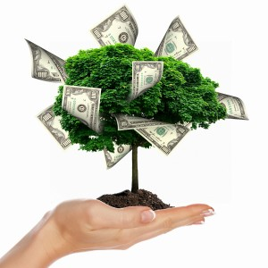 Money Tree for Discounted Notes